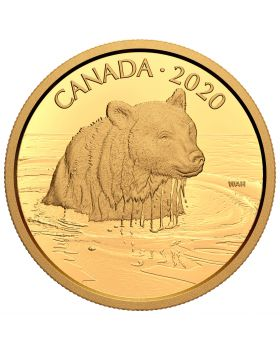 2020 35 gram Canada Canadian Wildlife Portraits: The Grizzly Bear .99999 Gold Proof Coin