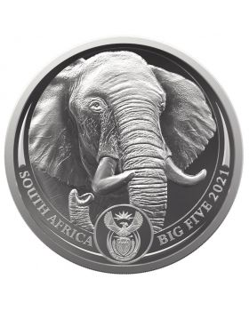 2021 1 oz South Africa Big Five Series II - Elephant .9995 Platinum Proof Coin