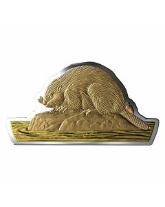 2020 100 gram Canada Real Shapes : The Beaver .9999 Silver with Gold Plating Proof Coin