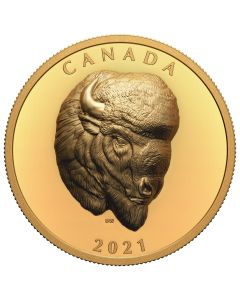 2021 2oz Canada Bold Bison .9999 Gold Proof Extraordinarily High Relief Coin